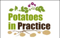 potatoes in practice